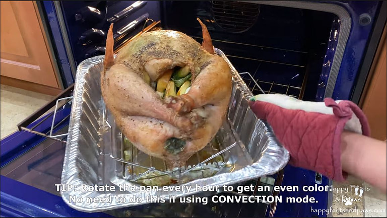 placing turkey in the oven to cook
